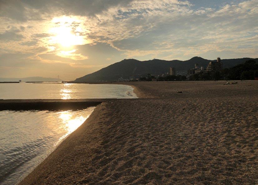 ゴミのない綺麗な砂浜を目指して