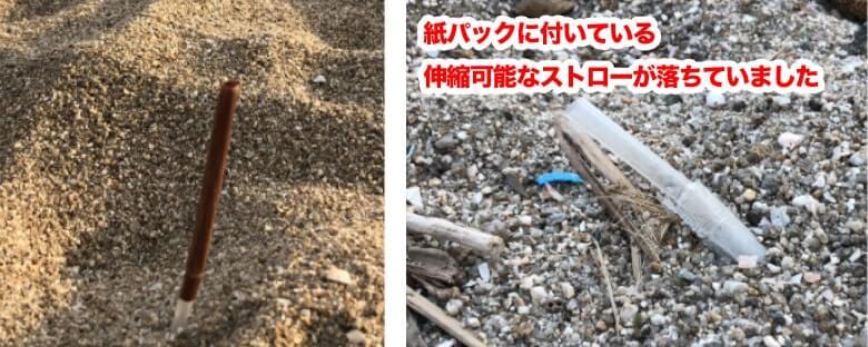 様々なタイプや色のストローが海で捨てられていた様子の写真