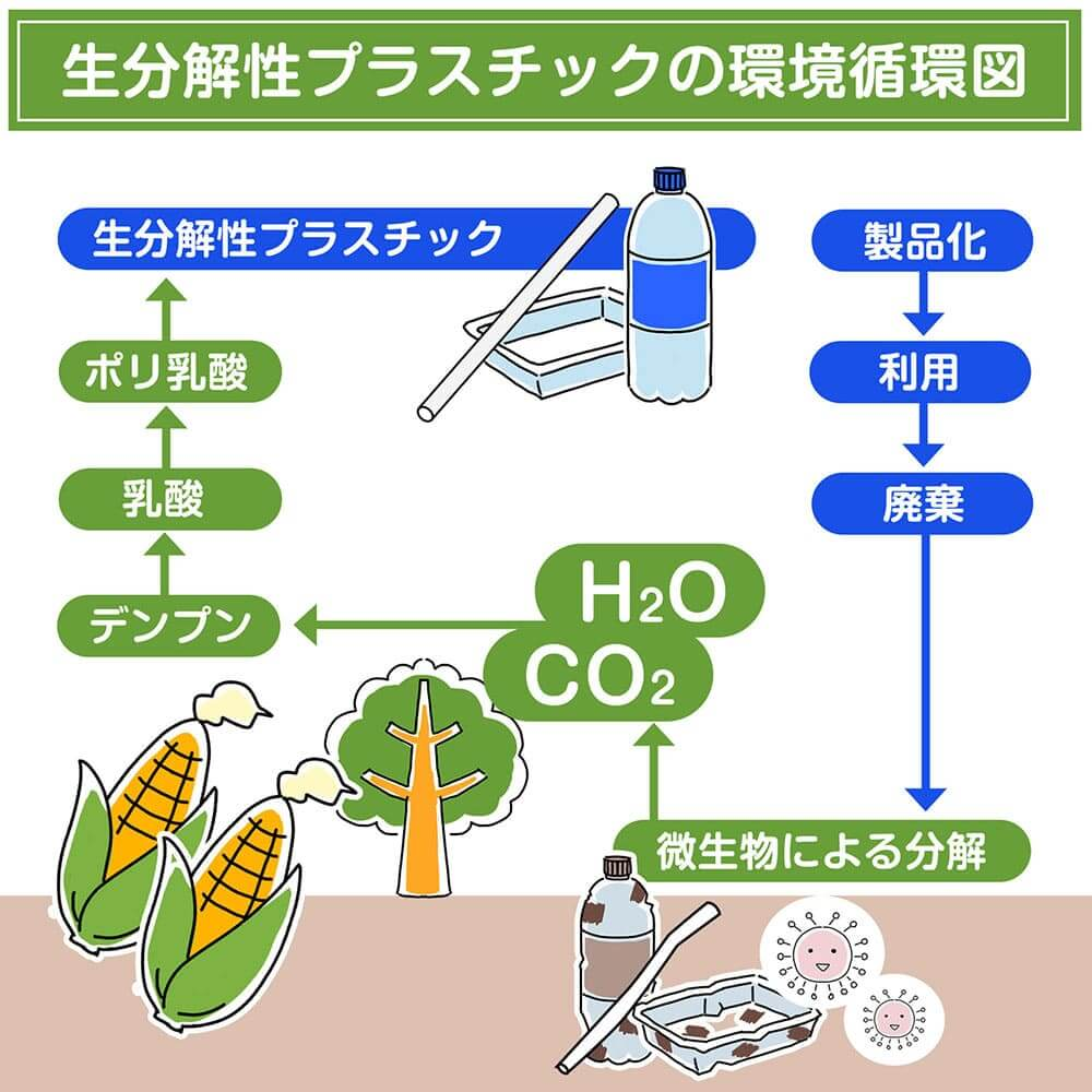 生分解性PLAプラスチックの環境循環図